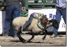 Bruneau Rodeo 348
