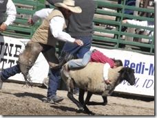 Bruneau Rodeo 369
