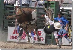 Bruneau Rodeo 062
