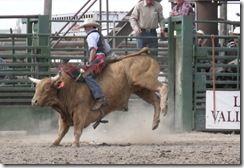 Bruneau Rodeo 143