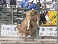 Bruneau Rodeo 147