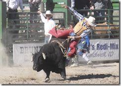 Bruneau Rodeo 706