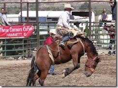 Bruneau Rodeo 546