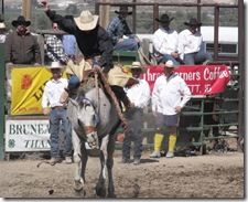 Bruneau Rodeo 576