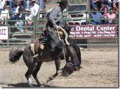 Bruneau Rodeo 580