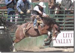 Bruneau Rodeo 583
