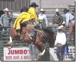 Bruneau Rodeo 624