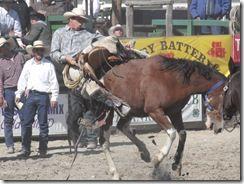 Bruneau Rodeo 635