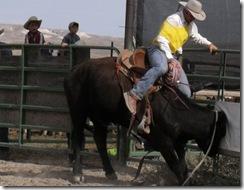 Bruneau Rodeo 209