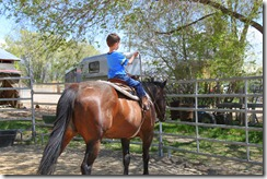 RR Park & Austin trotting by himself 078