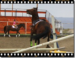 Wednesday Jumping May 26 075