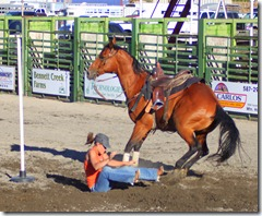 Junior Rodeo & stuff 811