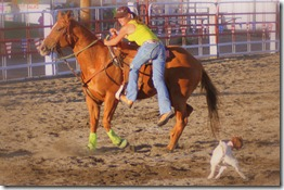 Junior Rodeo & stuff 1322