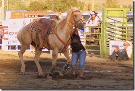 Junior Rodeo & stuff 1427
