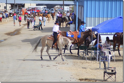 Autumn & Mule Show 418