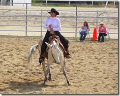 Autumn & Mule Show 449