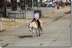 Autumn &amp; Mule Show 545
