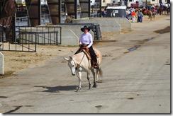Autumn & Mule Show 545
