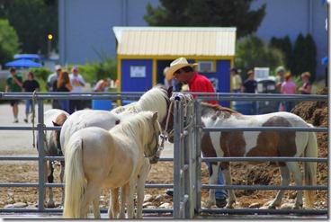 Autumn & Mule Show 640