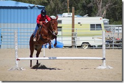 Autumn &amp; Mule Show 836