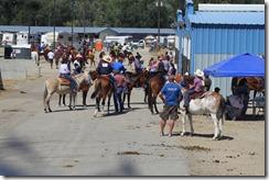 Autumn & Mule Show 925