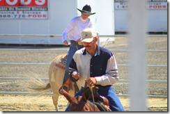 Autumn & Mule Show 967