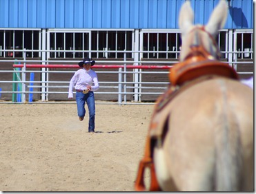 Autumn &amp; Mule Show 1019