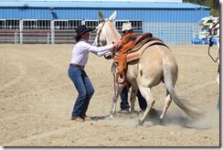 Autumn & Mule Show 1026