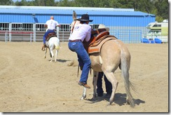 Autumn &amp; Mule Show 1029