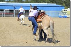 Autumn & Mule Show 1029