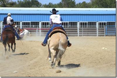 Autumn & Mule Show 1033
