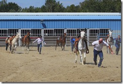 Autumn &amp; Mule Show 1051