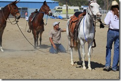 Autumn &amp; Mule Show 1065