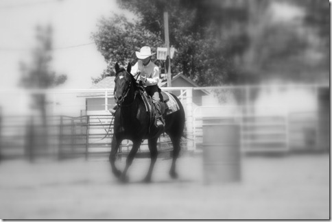 junior rodeo and stuff 2279