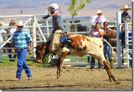 junior rodeo and stuff 2105