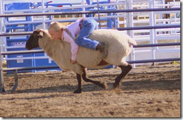 junior rodeo and stuff 659