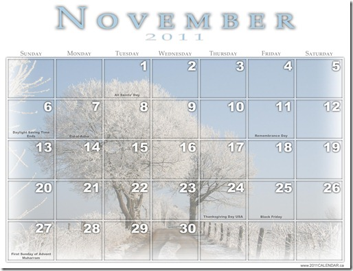 Holiday Calendar for November 2011