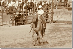 Junior Rodeo 459