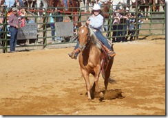 Junior Rodeo 460