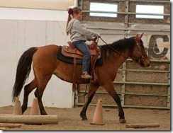 Lessons & Horse retirement 200