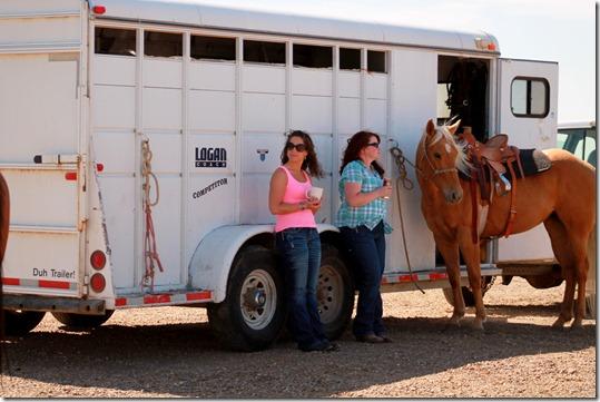 Open Horse Show 014