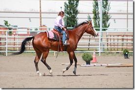 Open Horse Show 239