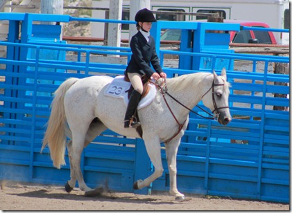 Open Horse Show 313