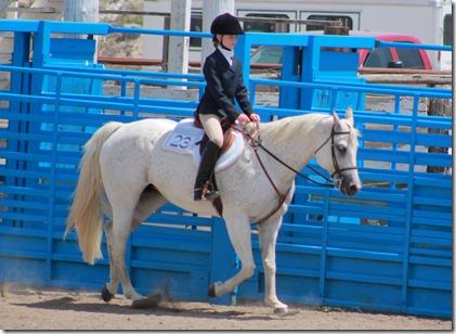 Open Horse Show 313