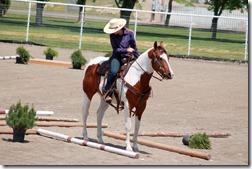 Open Horse Show 325