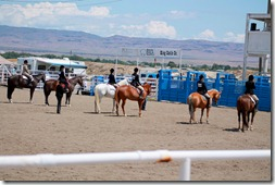 Open Horse Show 328