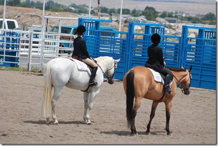 Open Horse Show 373