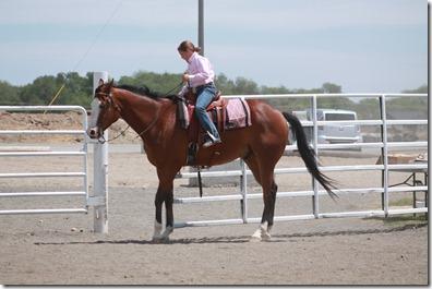 Open Horse Show 620
