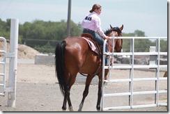 Open Horse Show 625