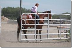 Open Horse Show 633
